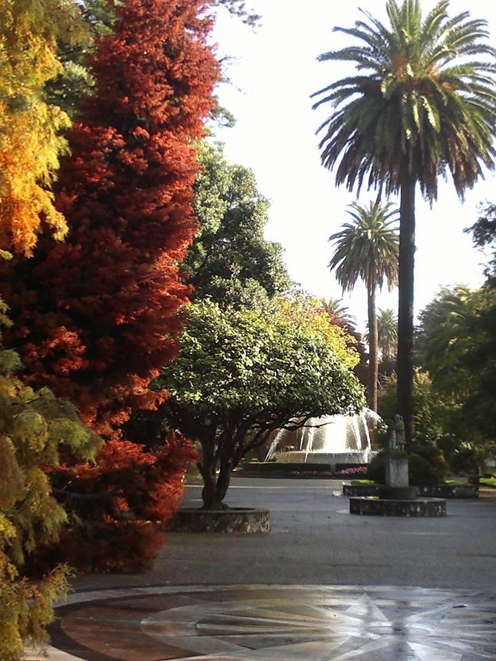 Cantón Ferrol